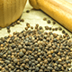 7 Top Health Benefits Of Cubeb Essential Oil