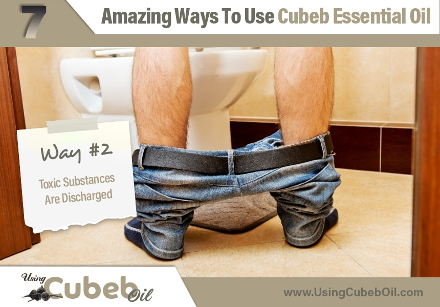 how to use cubeb oil